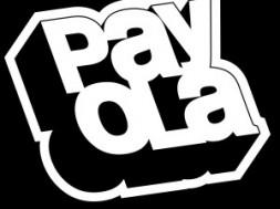 payy-300x300